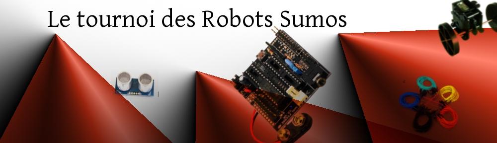 Tournoi de Robots Sumo